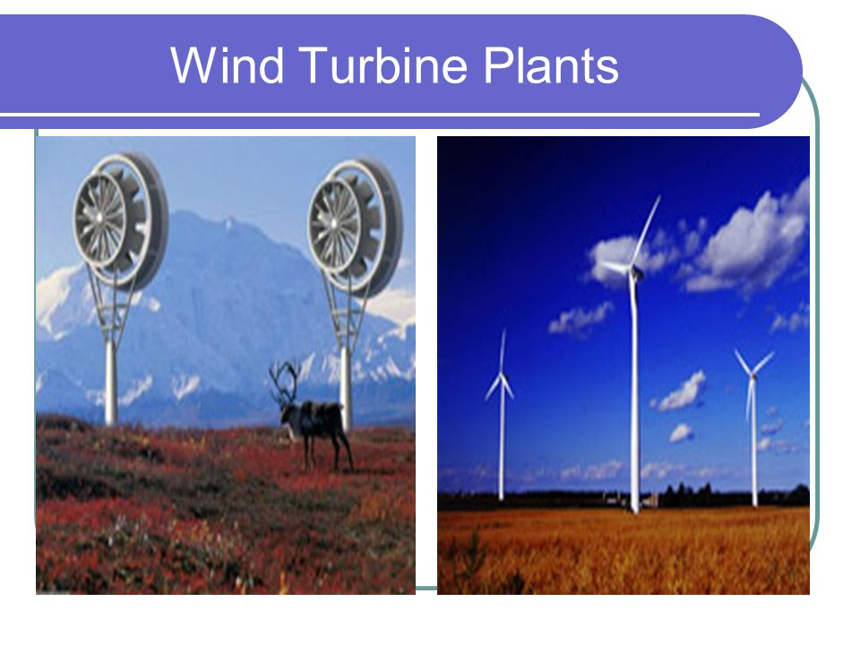 Wind Turbine Plants