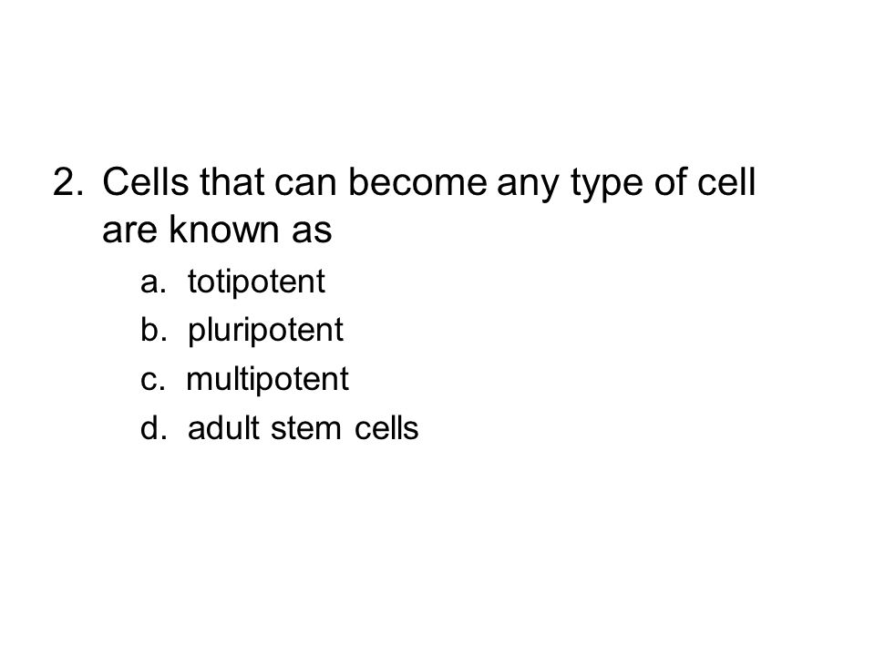 Cells that can become any type of cell are known as