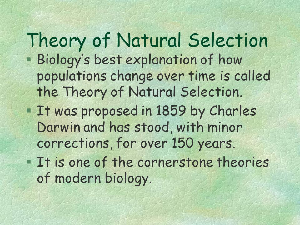 natural selection scale and cultural evolution essay Evolution by natural selection undermines the idea that humans are the culmination and ultimate beneficiaries ofshow more content the crux of the biological species concept is the maintenance of a distinct gene pool through reproductive isolation from other species (mayr 1996.