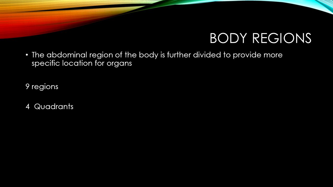 Body Regions The abdominal region of the body is further divided to provide more specific location for organs.