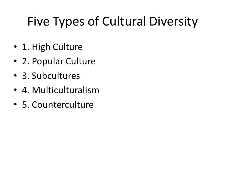 Five Types of Cultural Diversity