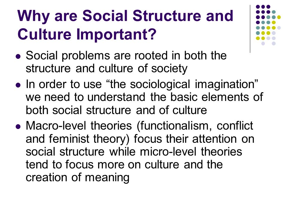Why Are Social Structure And Culture Important