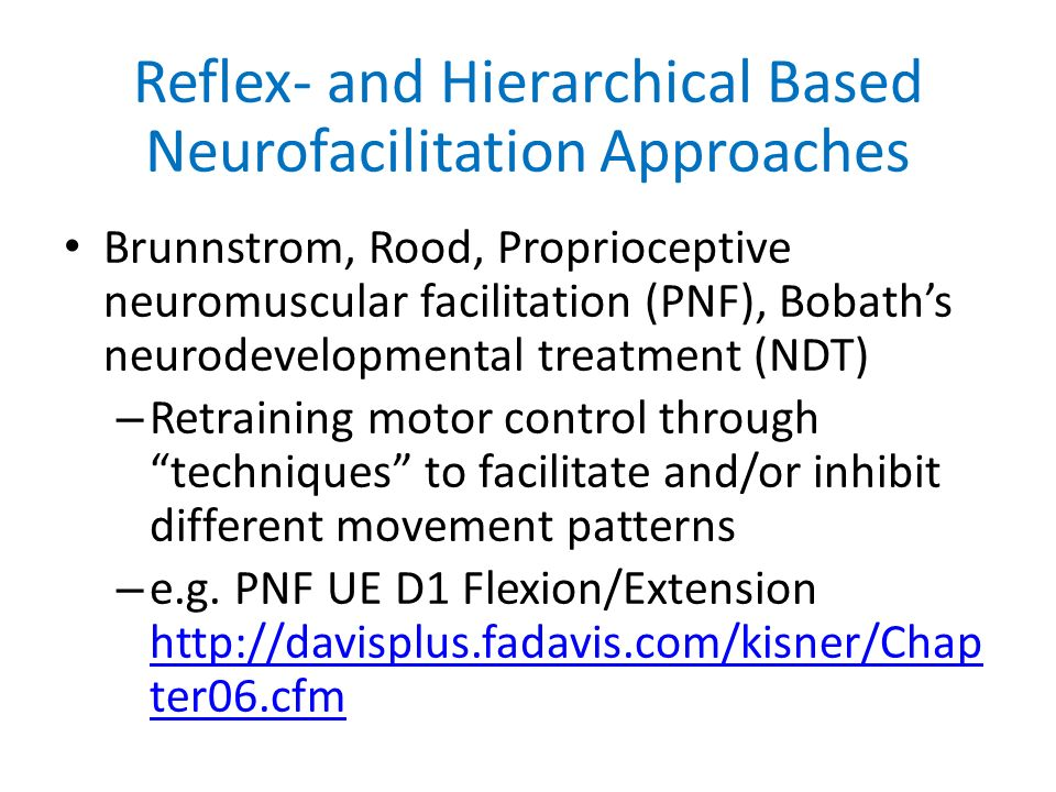 Ptp 512 Neuroscience In Physical Therapy Motor Control Issues And
