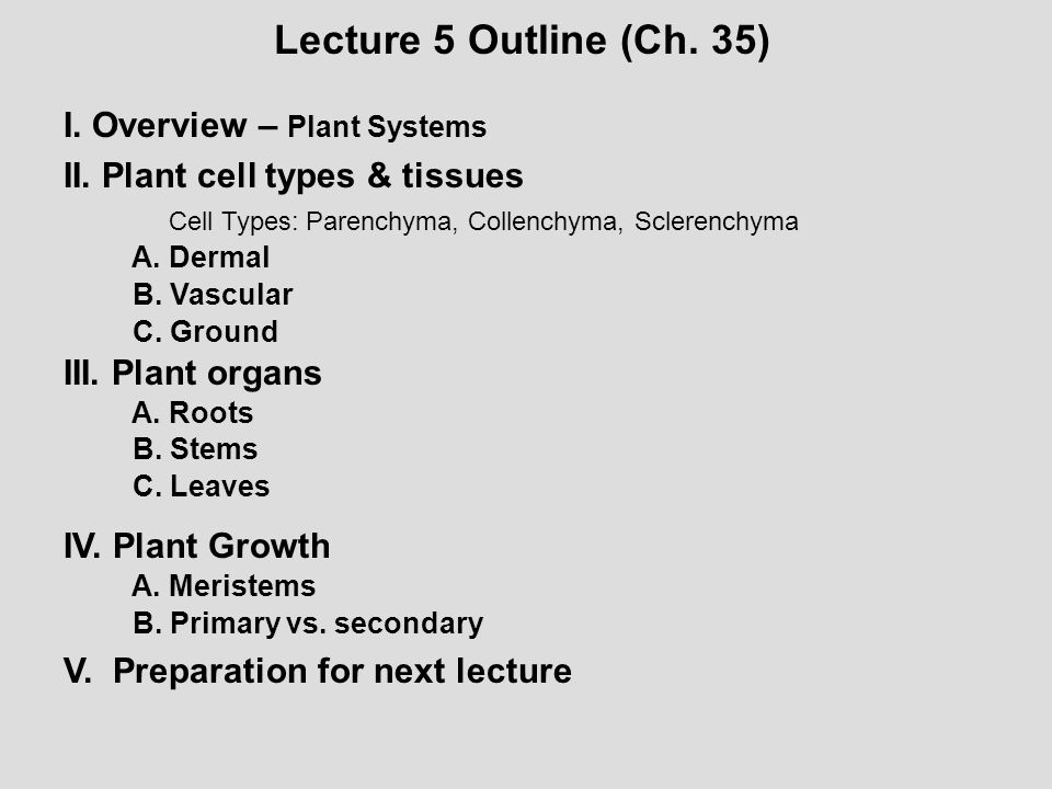 Lecture 5 Outline (Ch. 35) I. Overview – Plant Systems