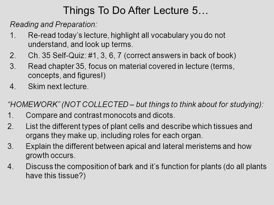 Things To Do After Lecture 5…