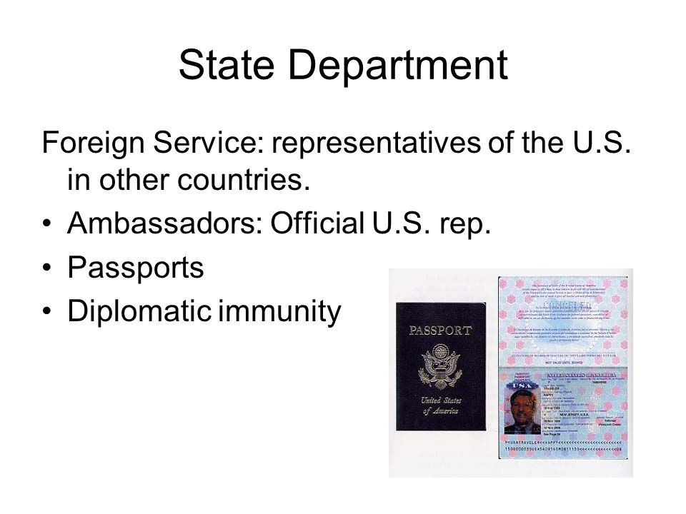 State Department Foreign Service: representatives of the U.S. in other countries. Ambassadors: Official U.S. rep.