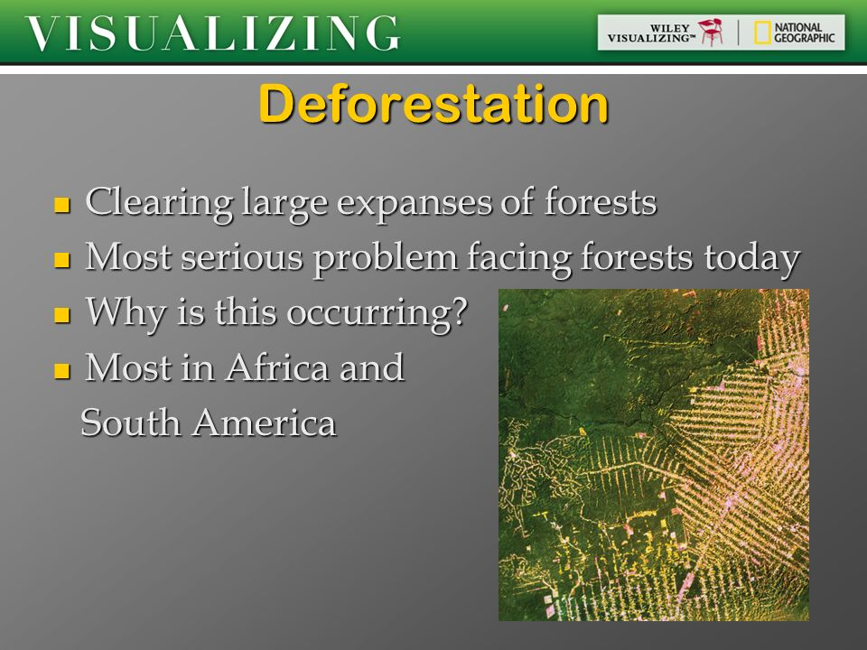 Deforestation Clearing large expanses of forests