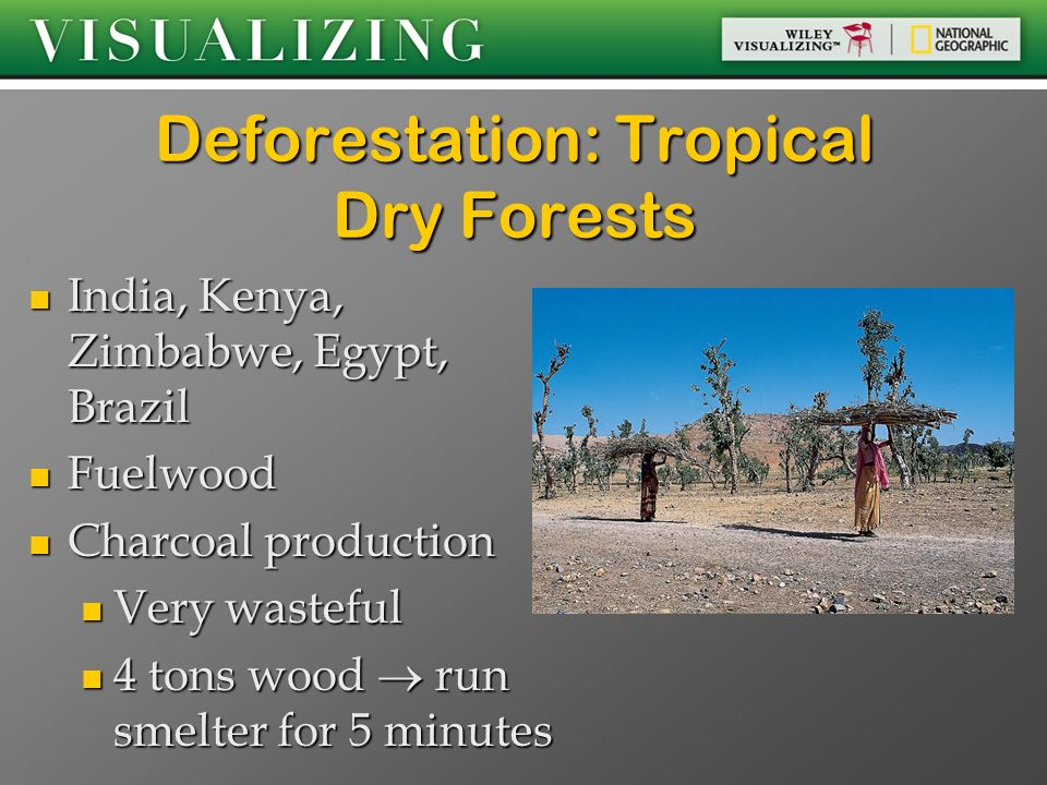 Deforestation: Tropical Dry Forests