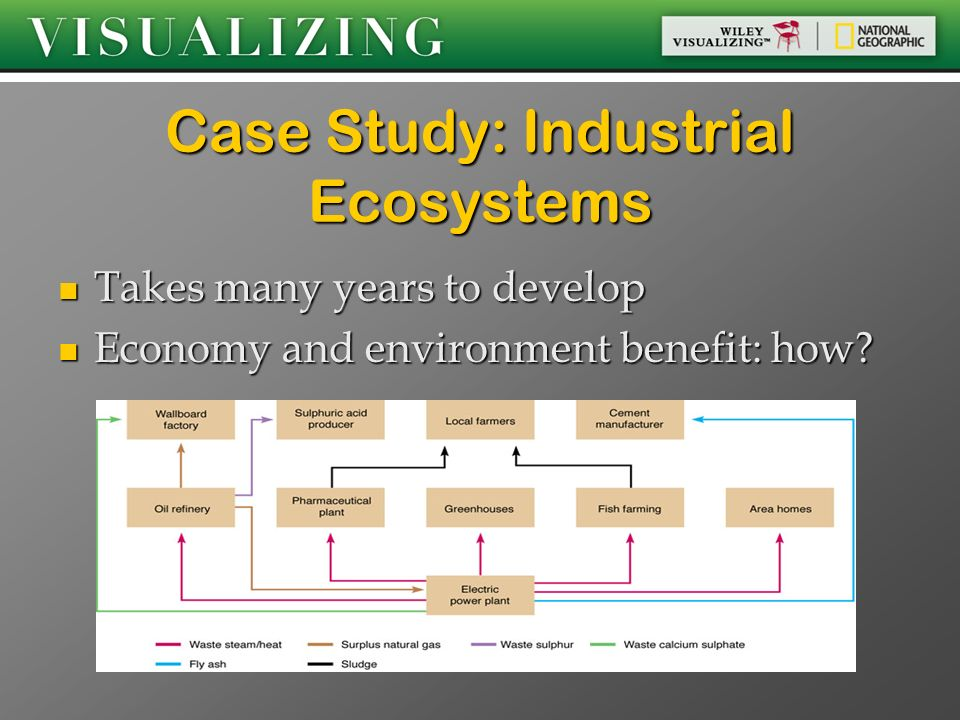 Case Study: Industrial Ecosystems
