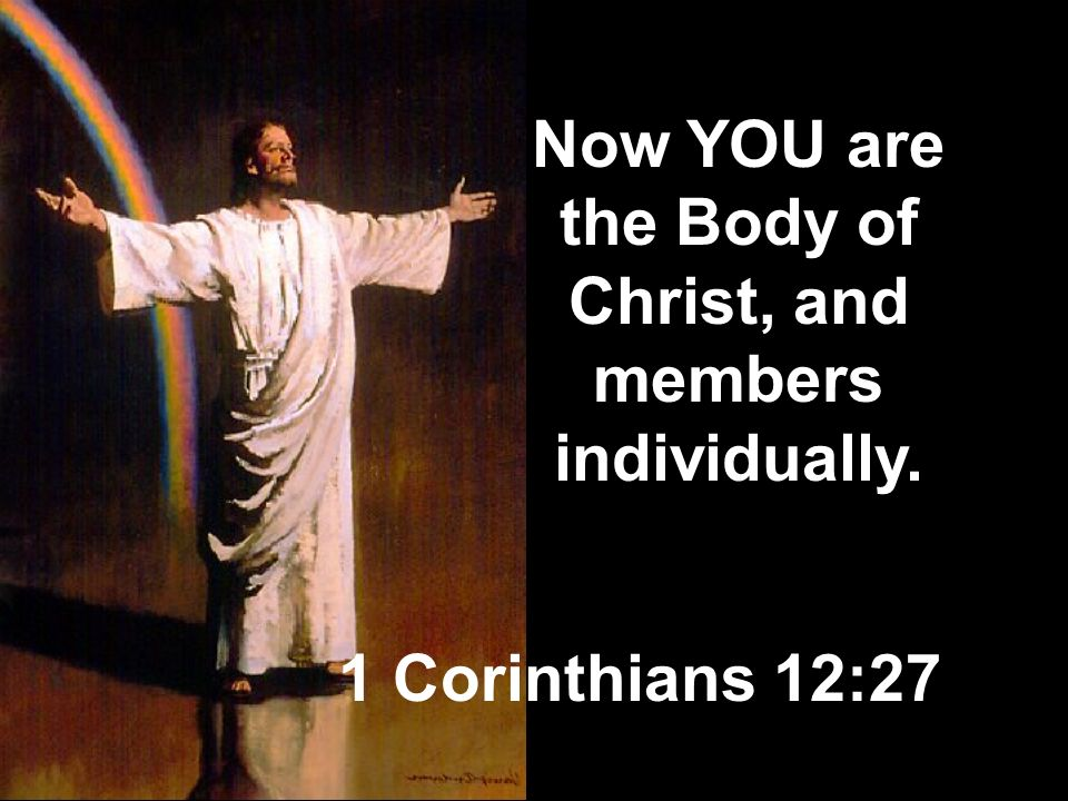 Now YOU are the Body of Christ, and members individually.