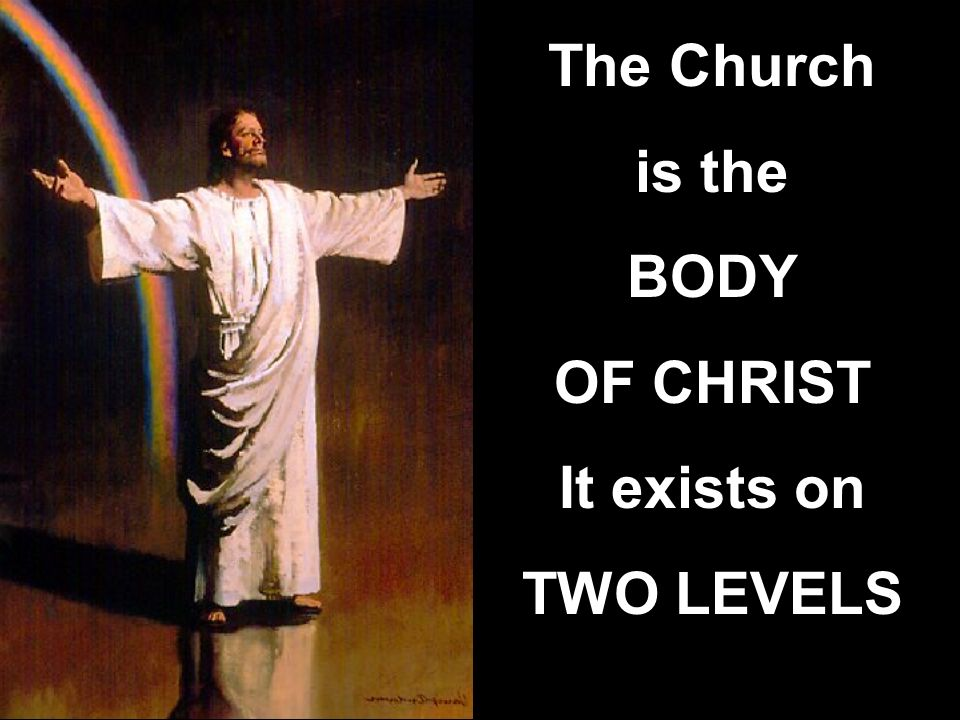 The Church is the BODY OF CHRIST It exists on TWO LEVELS