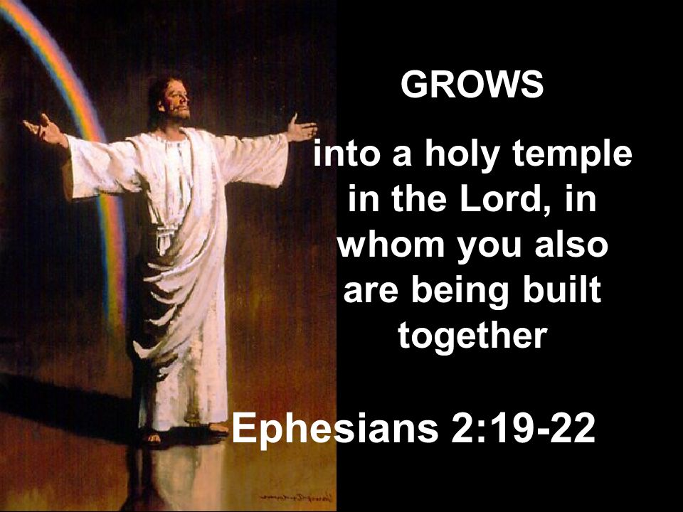 GROWS into a holy temple in the Lord, in whom you also are being built together Ephesians 2:19-22