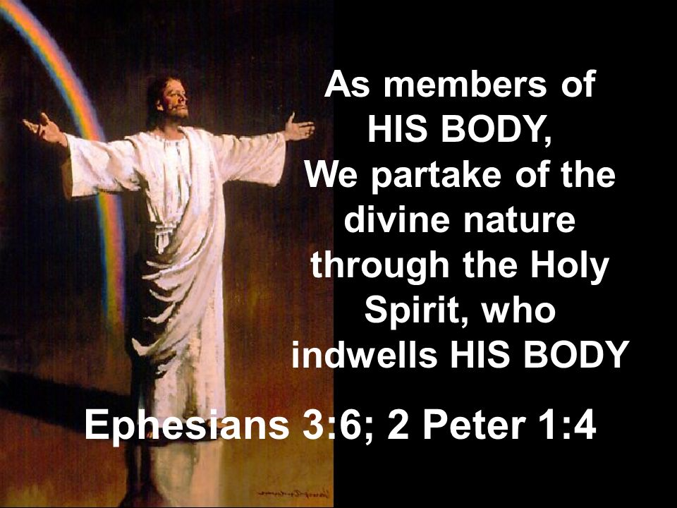 Ephesians 3:6; 2 Peter 1:4 As members of HIS BODY,