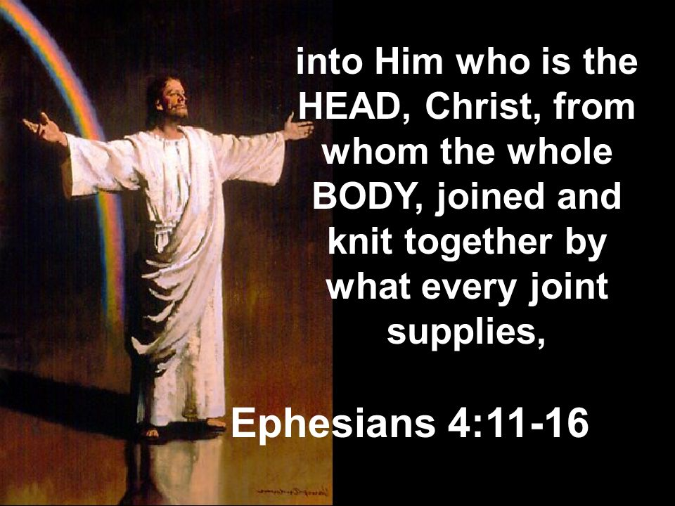 into Him who is the HEAD, Christ, from whom the whole BODY, joined and knit together by what every joint supplies,