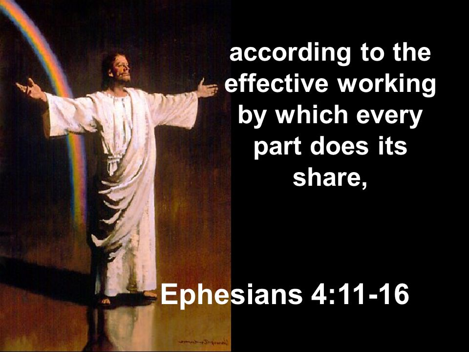 according to the effective working by which every part does its share,