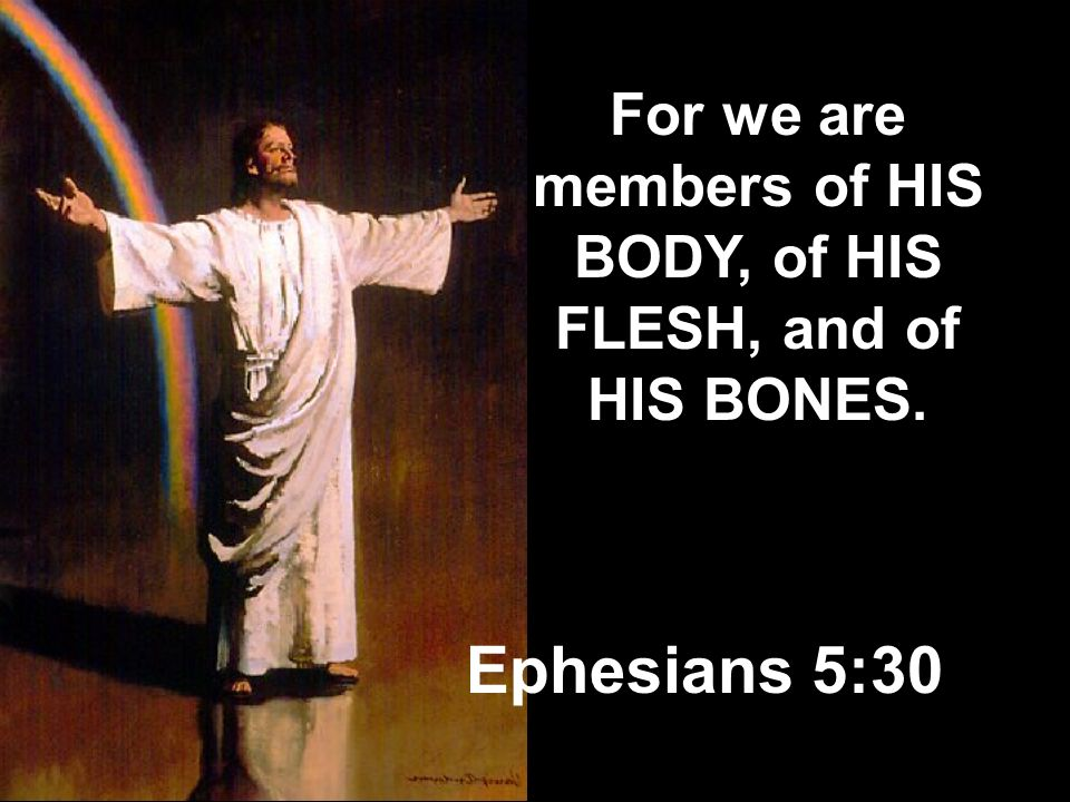 For we are members of HIS BODY, of HIS FLESH, and of HIS BONES.