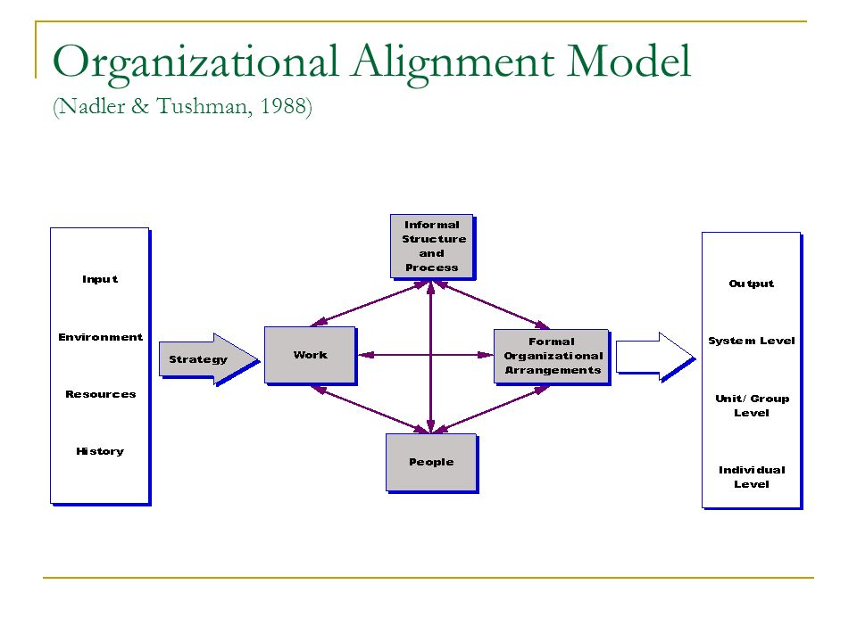 Organizational Alignment Model (Nadler & Tushman, 1988)
