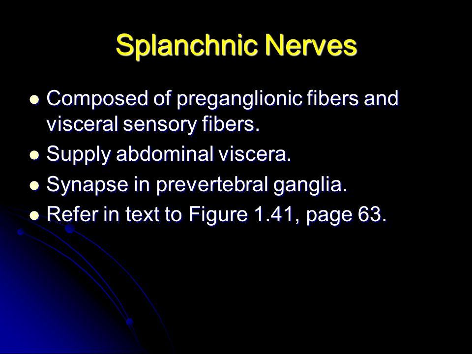 Splanchnic Nerves Composed of preganglionic fibers and visceral sensory fibers. Supply abdominal viscera.