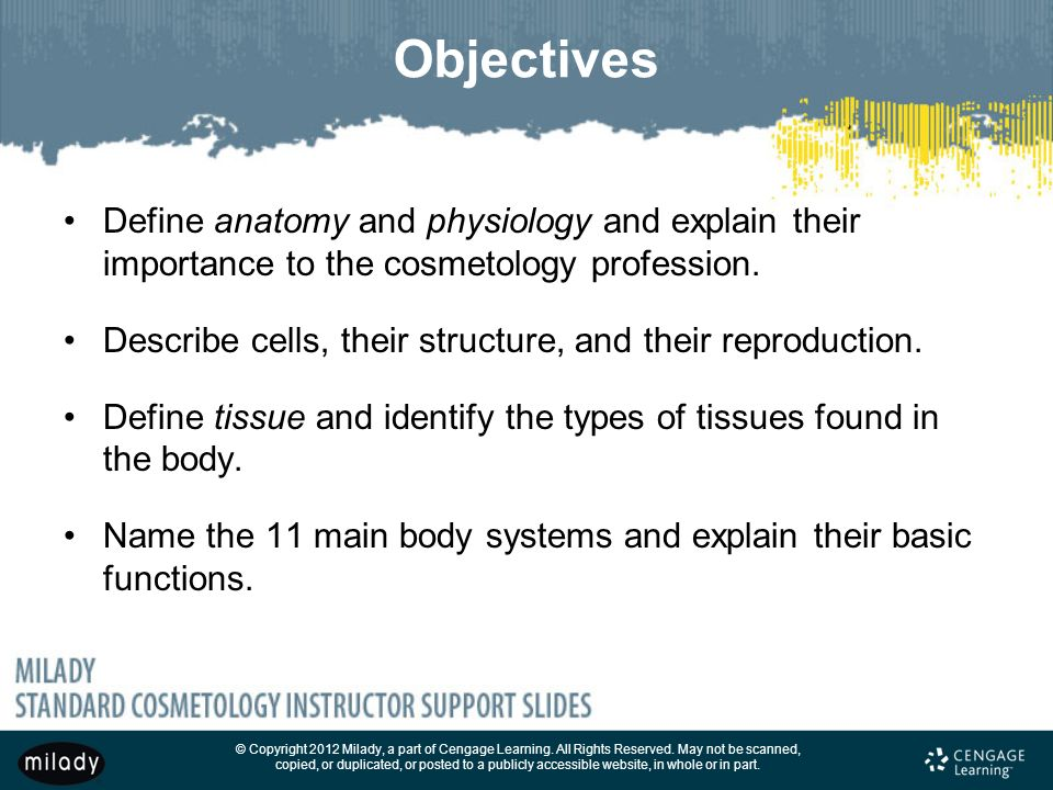 Chapter 6 General Anatomy And Physiology Ppt Download