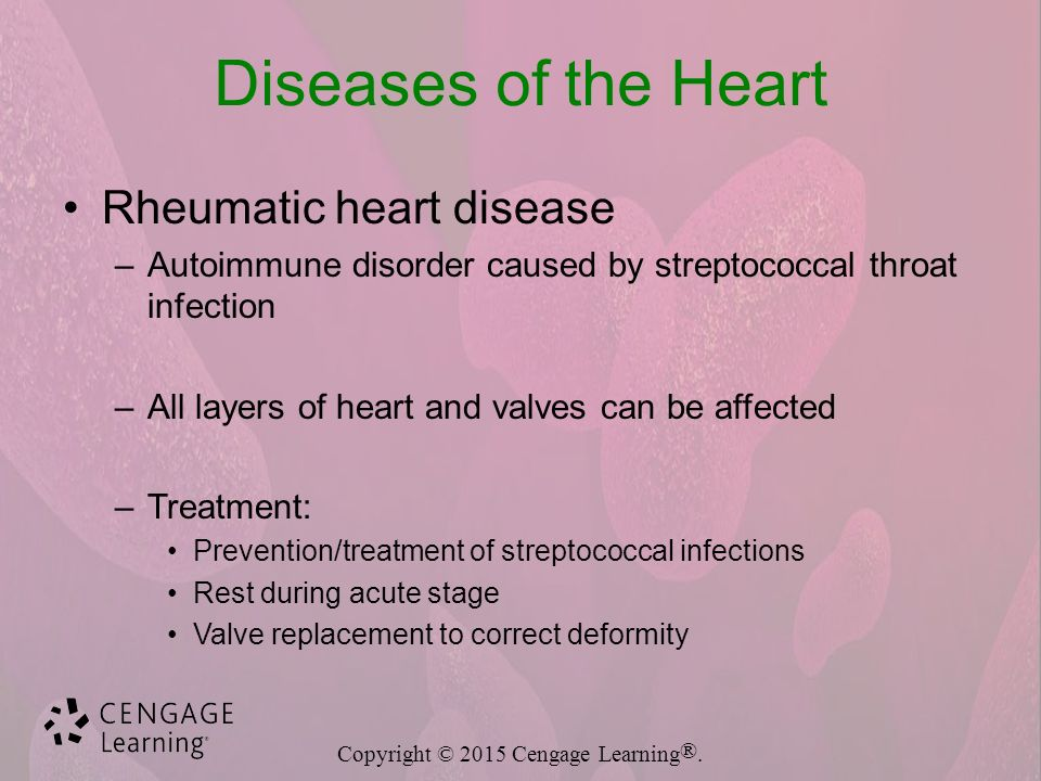 Cardiovascular System Diseases and Disorders - ppt video