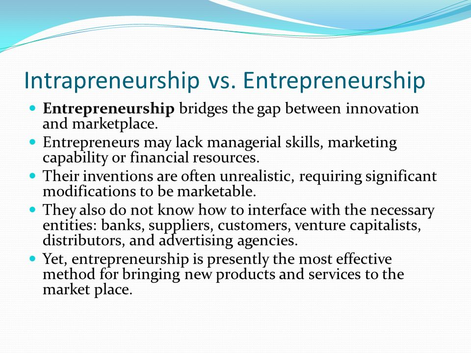 The Nature and Importance of Entrepreneurs - ppt video