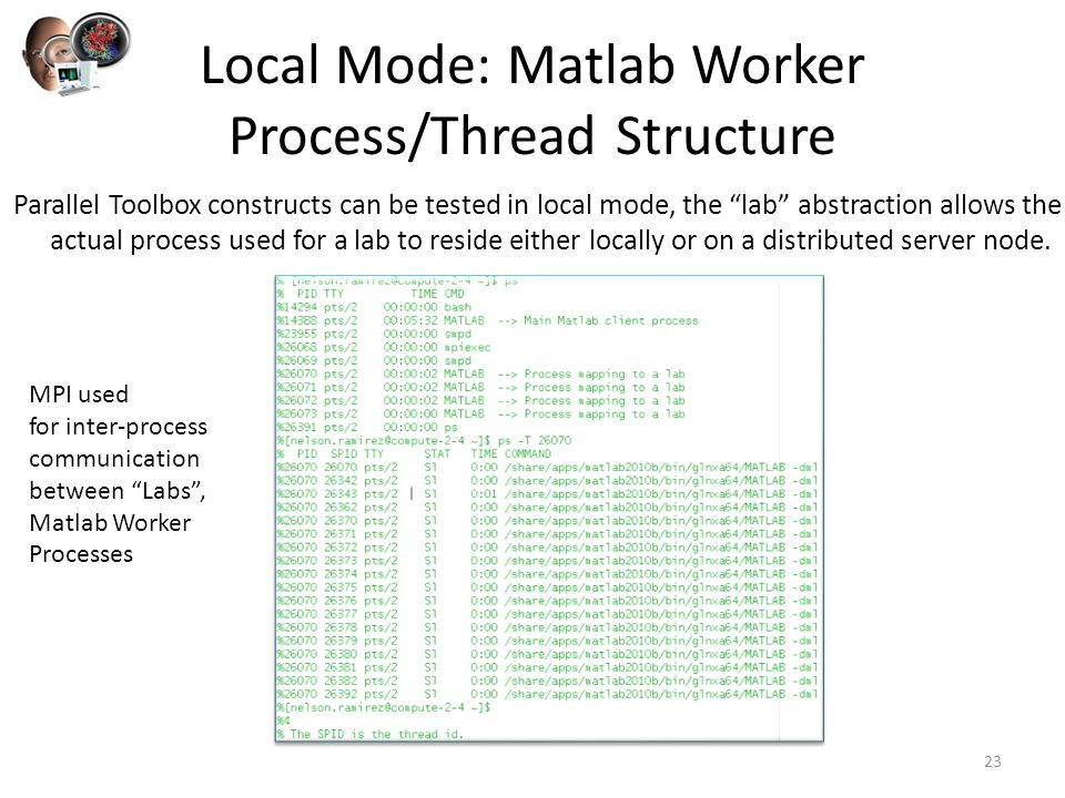 Parallelization with the Matlab® Distributed Computing
