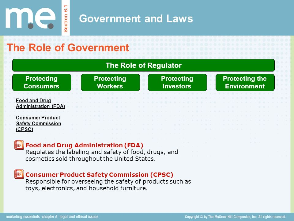 Government and Laws The Role of Government The Role of Regulator