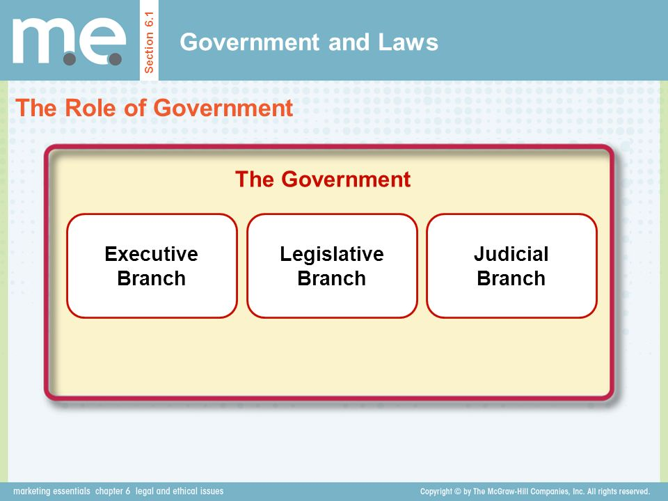 Government and Laws The Role of Government The Government