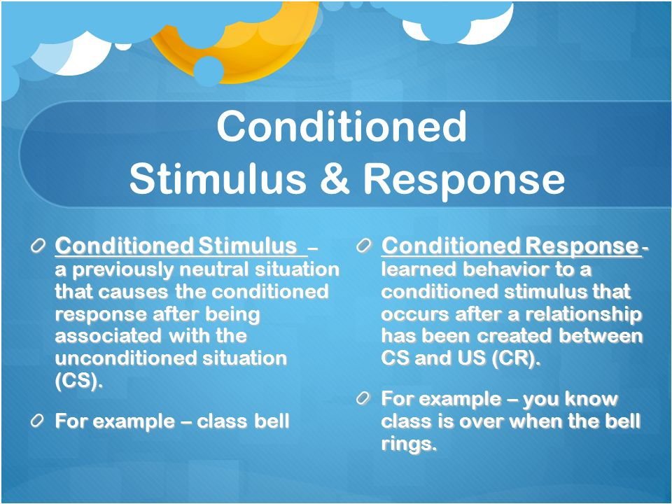 stimulus response essay Unlike most editing & proofreading services, we edit for everything: grammar, spelling, punctuation, idea flow, sentence structure, & more get started now.