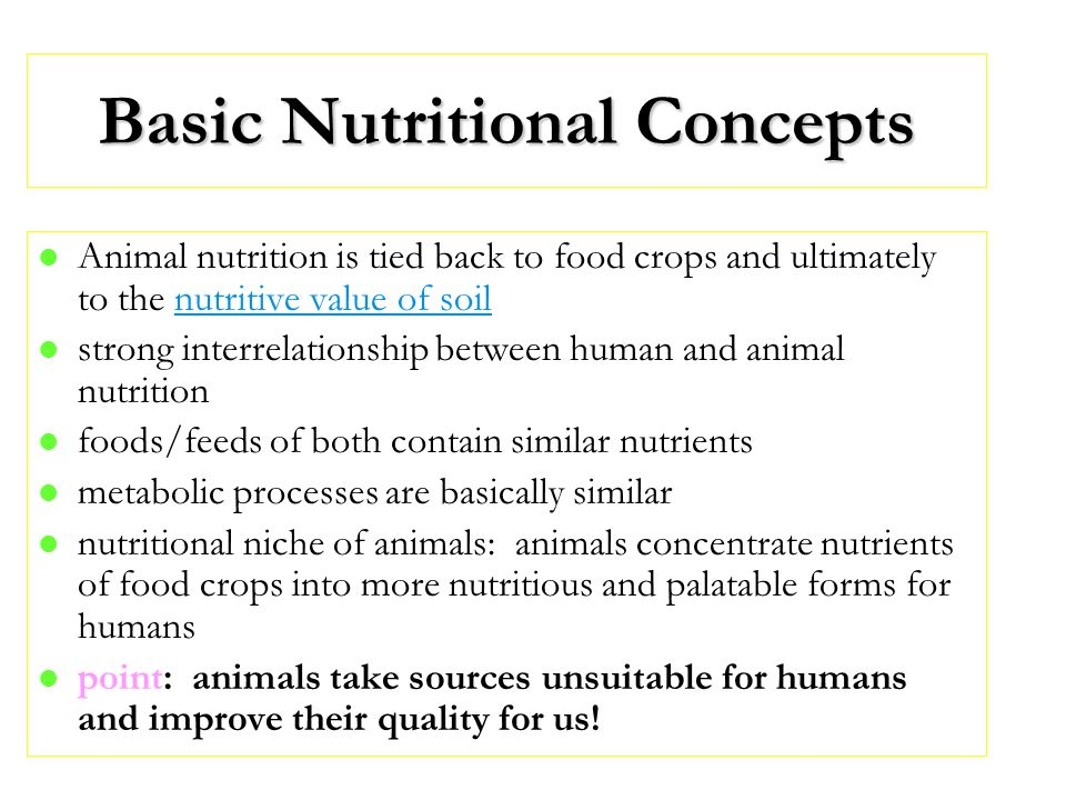 Basic Nutritional Concepts