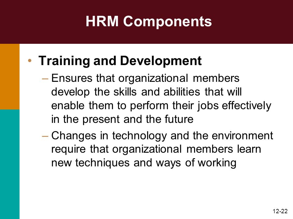 HRM Components Training and Development