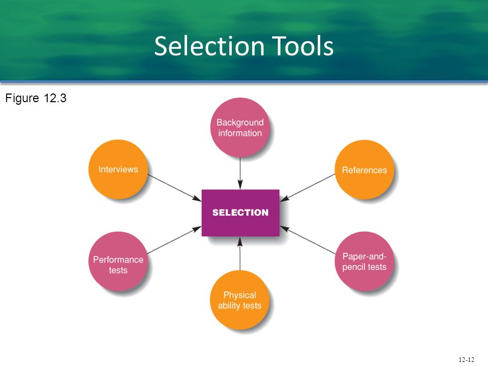 Selection Tools Figure 12.3 Background Information
