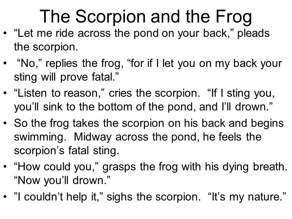 frog and scorpion short story