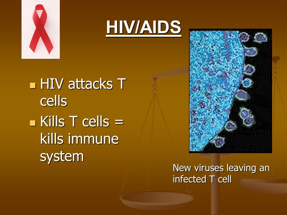HIV/AIDS HIV attacks T cells Kills T cells = kills immune system