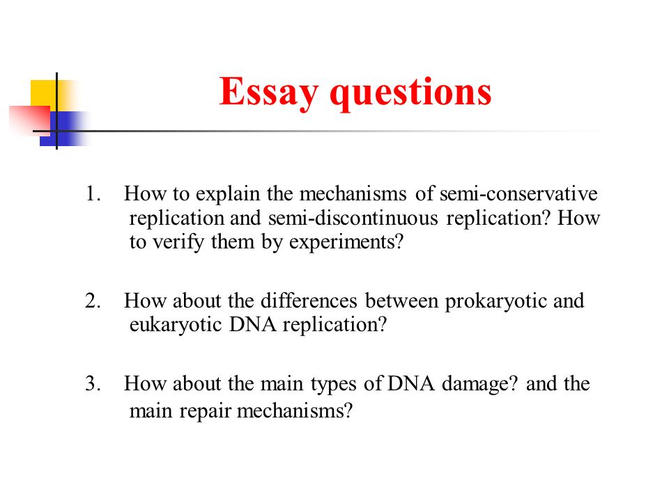 Dna Replication Semiconservative Mechanism  Meselson  Stahl  Essay Questions
