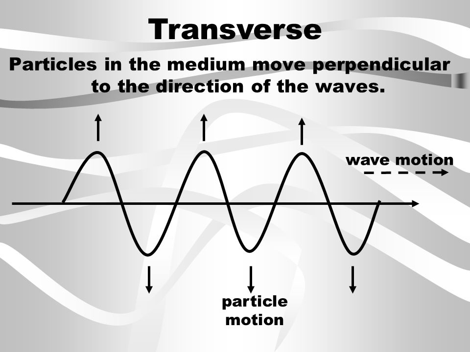 Transverse Particles in the medium move perpendicular to the direction of the waves.