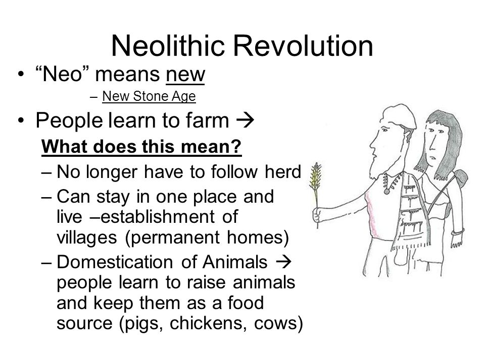 paleolithic age and neolithic revolution The differences between paleolithic and neolithic periods are: (a) paleolithic is the old stone age and neolithic the new stone age (b) paleolithic tools.