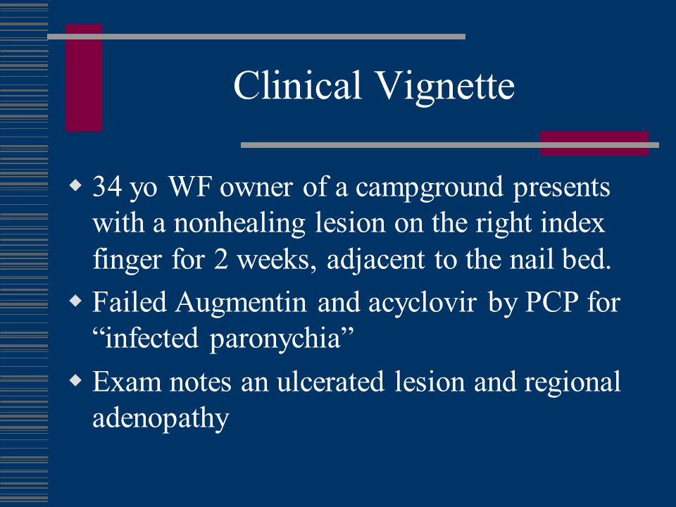 Clinical Vignette 34 yo WF owner of a campground presents with a nonhealing lesion on the right index finger for 2 weeks, adjacent to the nail bed.