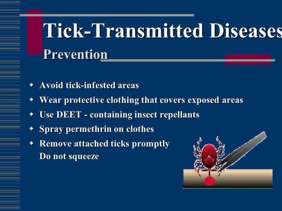 Tick-Transmitted Diseases Prevention
