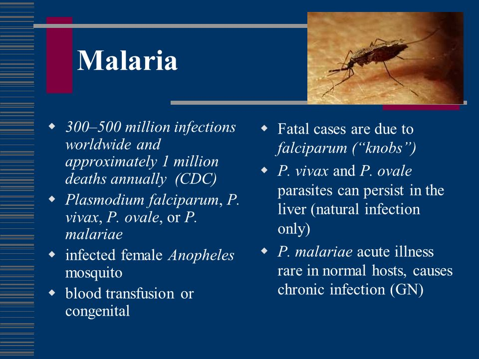 Malaria 300–500 million infections worldwide and approximately 1 million deaths annually (CDC)