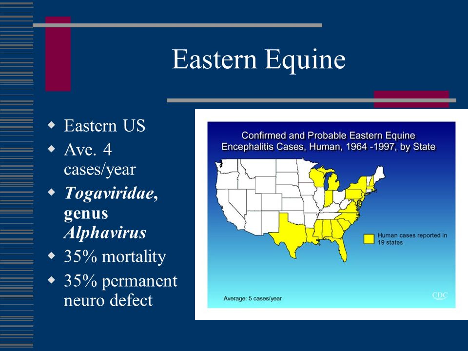 Eastern Equine Eastern US Ave. 4 cases/year