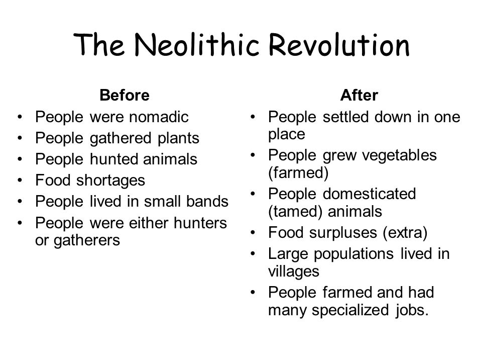why did the neolithic revolution happen