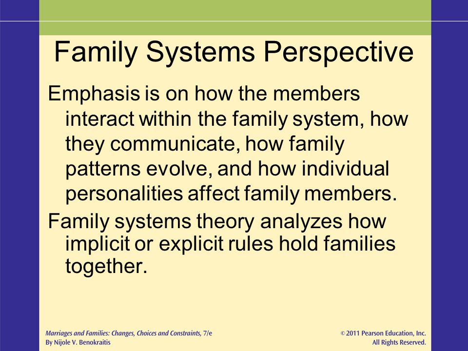 family systems perspective