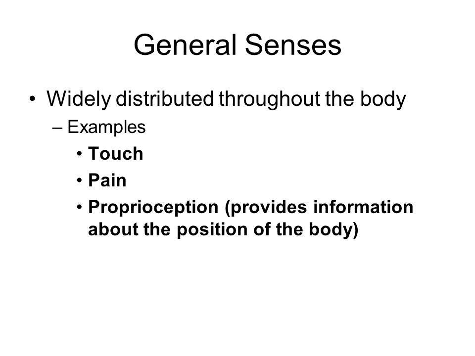 General Senses Widely distributed throughout the body Examples Touch
