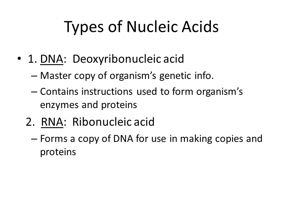 Types of Nucleic Acids 1. DNA: Deoxyribonucleic acid