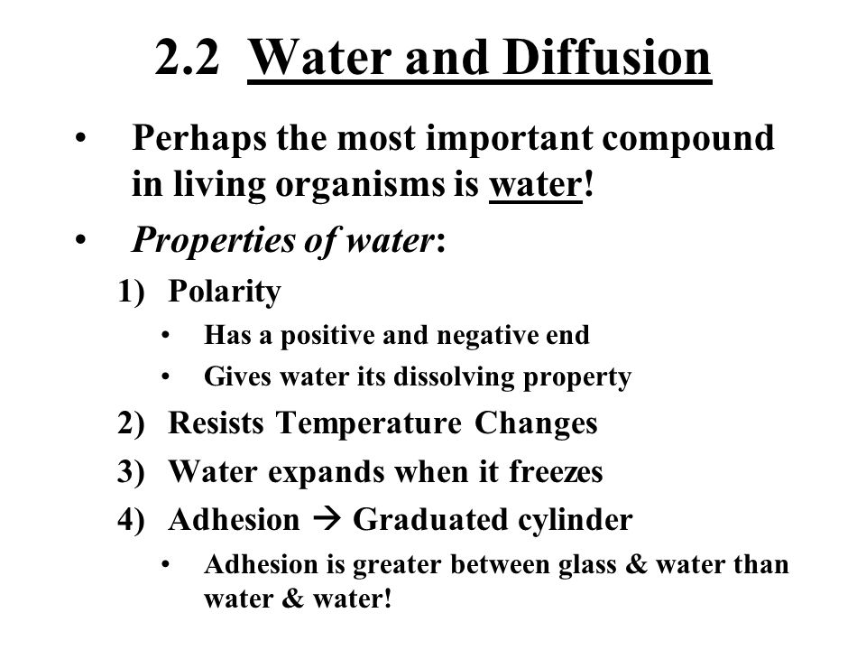 2.2 Water and Diffusion Perhaps the most important compound in living organisms is water! Properties of water: