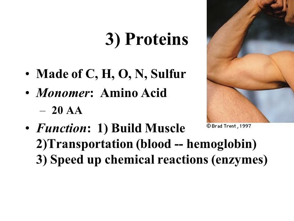3) Proteins Made of C, H, O, N, Sulfur Monomer: Amino Acid