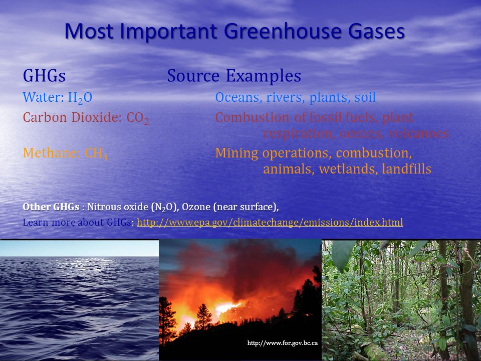 Most Important Greenhouse Gases