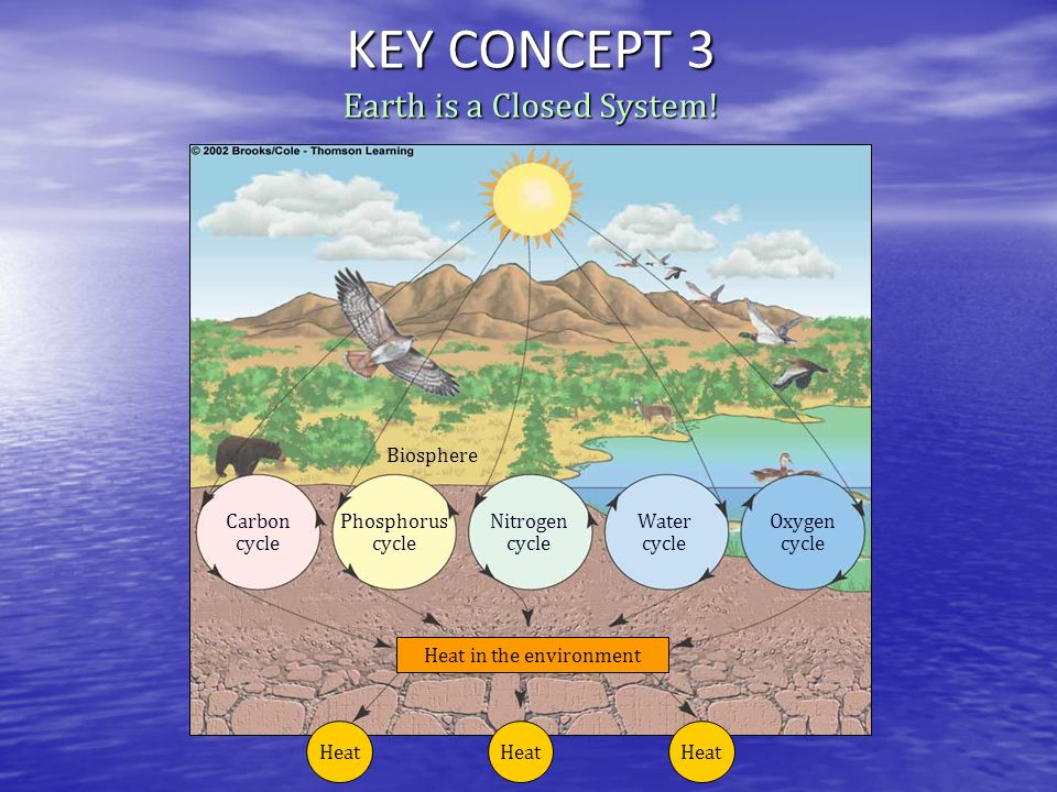 KEY CONCEPT 3 Earth is a Closed System! Biosphere Carbon cycle