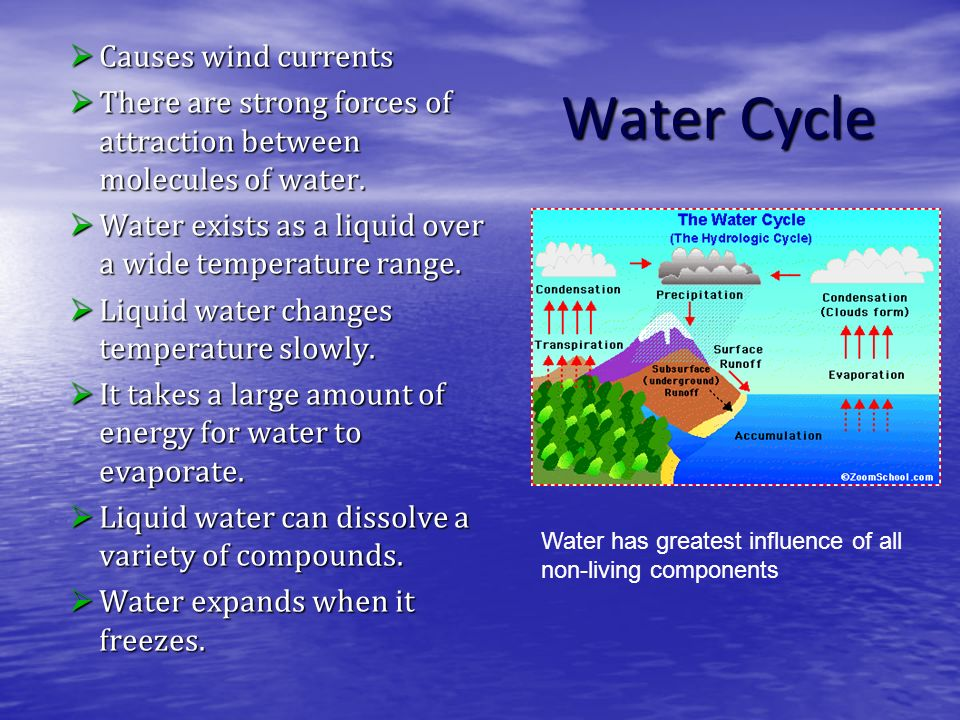 Water Cycle Causes wind currents